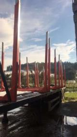 Servicii De Transport de vanzare - Efectuez transport material lemnos