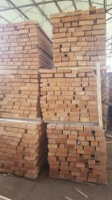 Finden Sie Holzlieferanten auf Fordaq - Bretter, Dielen, Buche