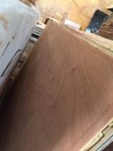 单板及镶板 亚洲 - 天然胶合板, 刺槐