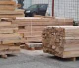 Find best timber supplies on Fordaq - Beech Planks (boards) C
