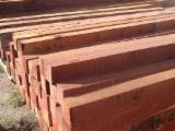 Laubschnittholz, Besäumtes Holz, Hobelware  Zu Verkaufen - Balken, Abarco, Algarrobo Blanco, Amarante - Purpleheart