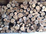 Firewood/Woodlogs Not Cleaved - Beech, Oak Firewood/Woodlogs Not Cleaved