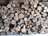 Firewood, Pellets And Residues - Beech, Oak Firewood/Woodlogs Not Cleaved