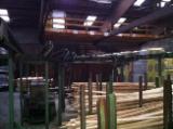Деревообробне Устаткування - Станція Для Сортування Пиломатеріалів Möhringer Б / У Німеччина