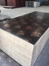 Sell And Buy Marine Plywood - Register For Free On Fordaq Network - Rubber Wood Black Film Faced Plywood