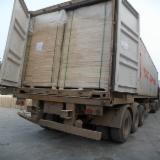 Panel furniruit - Vand Panou Din Lemn Masiv - 1 Strat 22 mm in Shandong