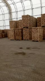 Wholesale Biomass Pellets, Firewood, Smoking Chips And Wood Off Cuts - Dry Beech Firewood Cleaved, 25; 33 cm long