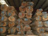 Schnittholz Und Leimholz - Buchen-Blockware KD