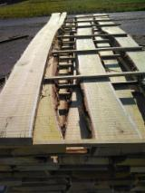 Unedged Hardwood Timber - Acacia