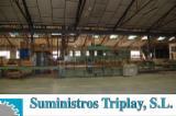 Trouvez tous les produits bois sur Fordaq - Vend Presse À Plaquer Les Surfaces Planes, Alimentation Automatique TALLERES MARCH Occasion Espagne