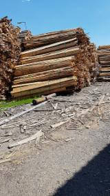 Unedged Timber - Boules importers and buyers - Pine Loose Timber 20 mm