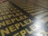 Fineer En Hout Panelen Azië - Film Faced Multiplex (Zwarte Laag), Eucalyptus