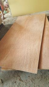 Plywood Supplies - 9 mm Eucalyptus Commercial Plywood