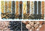 Leña, Pellets Y Residuos Gránulos De Cáscara De Girasol - Venta Gránulos De Cáscara De Girasol Braila ,Bucuresti Rumania