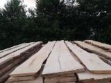 Hardwood  Unedged Timber - Flitches - Boules For Sale - Sycamore Maple Loose Romania