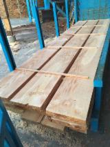 Softwood  Sawn Timber - Lumber - KD Radiata Pine Lumber, 38; 50 mm thick