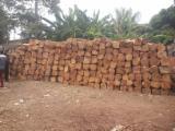 Benin - Fordaq Online market - Kosso Square Logs, 40 x 40 cm