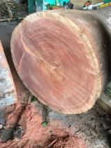筒状非洲楝木, 旋切