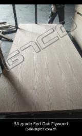 Red Oak Laminated 18 mm Plywood
