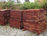 Merbau Hardwood Logs - Padauk / Merbau Square Logs