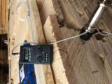 Hardwood  Unedged Timber - Flitches - Boules PEFC FFC - German Ash Loose Timber