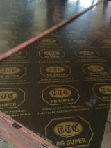 Vend Contreplaqué Filmé (Brun) Eucalyptus 21 mm Chine