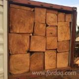 Vietnam Hardwood Logs - Need Doussie Square Logs 40 cm