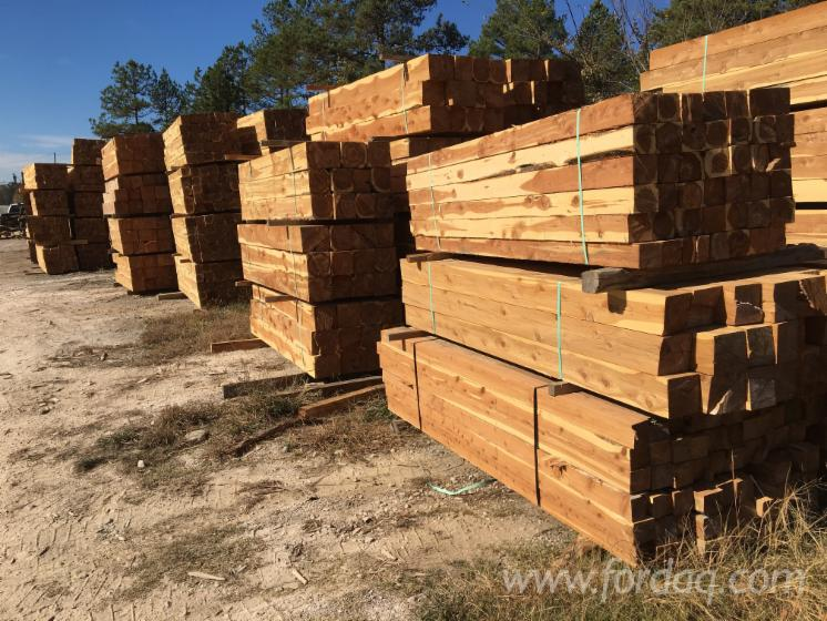 For Sale Eastern Red Cedar Square Logs/Cants from USA