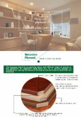 Plywood For Sale - Full Elm Fancy Plywood, 18 mm thick