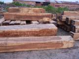 Schnittholz Und Leimholz Südamerika - Kanthölzer, Morado