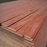 Thailand - Fordaq Online market - Eucalyptus Construction Plywood 4,6,10,15,20 mm