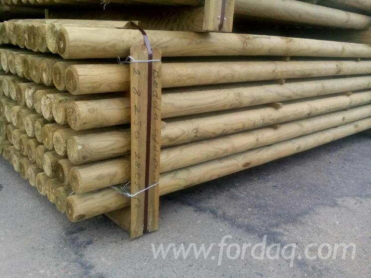 Pine-Poles-from-Belarus
