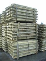 Wälder und Rundholz - Entrindete und imprägnierte Gartenpfähle. Unterschiedliche Größen und Längen. Nadelholz.