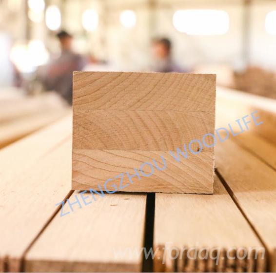 Evropski-Li%C5%A1%C4%87ari--Puno-Drvo