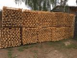 Yumuşak Ahşap  Tomruk Satılık - Konik Şekilli Yuvarlak Kirişler, Çam  - Redwood, Ladin  - Whitewood, FSC