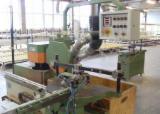 Single End Tenoning Machine - Used Haberkorn FZS-SD 1994 Single End Tenoning Machine For Sale Germany