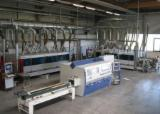 Used Homag Maschine 1 FR/10/12/W/LW1< CRLF> Maschine 2 FR/20/14 2007 Double End Tenoning Machine For Sale Germany