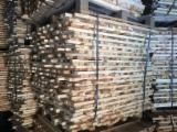 Softwood  Sawn Timber - Lumber - Pine Stave Wood 20x50