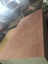 Plywood for Sale - Eucalyptus Commercial Plywood 8x4'
