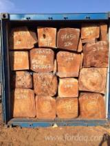 Hardwood Logs importers and buyers - 35+ cm Tali  Square Logs
