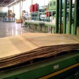 Eucalyptus Rotary Cut Veneer - Eucalyptus/Acacia Rotary Cut Dried Veneer, 1.6 mm thick
