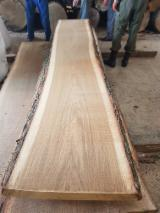 White Oak Unedged Lumber 27mm АВС