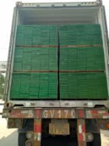 Vente En Gros De LVL - Vend Lamibois - LVL Pin Radiata Chine