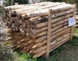 Tvrdo Drvo  Trupci - Konusno Oblikovani Okrugle Grede, Bagrem, Kesten