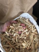 薪炭材-木材剩余物 木片(源自使用过的木材) - 木片-树皮-下脚料-锯屑-削片 木片(源自使用过的木材) 北美脂松
