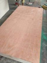 Full Elliotis Pine Plywood, 18 mm thick