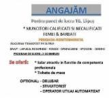 Servicii și Locuri de muncă - LOC DE MUNCA TARGU LAPUS