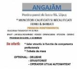 Permanent Position Forestry Job - Muncitori Calificati Si Necalificati Romania