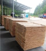 Pallet lumber - Pine  - Scots Pine Packaging timber from Ukraine
