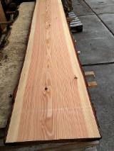 Softwood  Unedged Timber - Flitches - Boules - Larch Unedged Planks, 32 mm thick